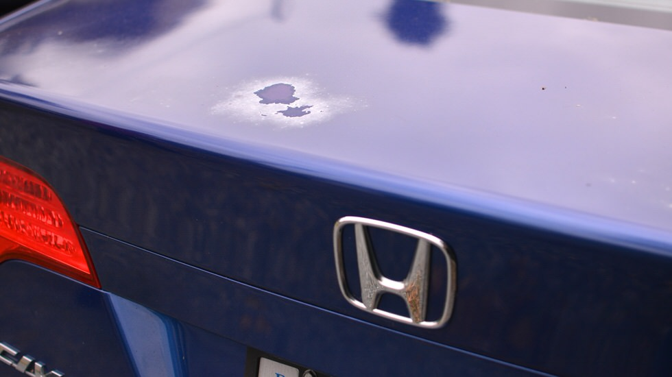 Civic Trunk Lid 17