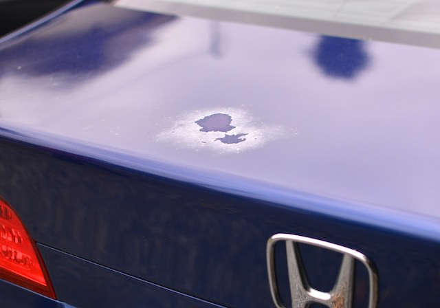 Before & After: Civic Trunk Lid